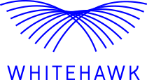 Whitehawk: 10 Rules for Cybersecurity Salespeople